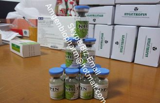 China Legal Somatropin Human Growth Hormone , human interferon alpha 2b For Losing Cellulite supplier