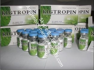 China Kigtropin White Lyophilized powder natural human growth hormones Fat loss 10 iu / vial supplier