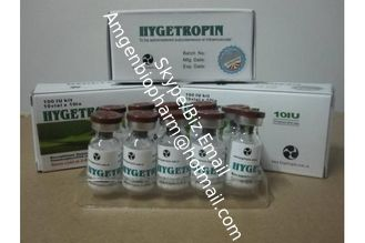 China Bodybuilding Hygetropin HGH Human Growth Hormone Natural Supplements supplier